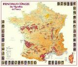 Principal grape varieties of France map