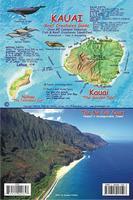 Kauai fish card