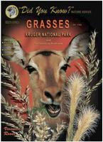Grasses of the Kruger National Park Guide