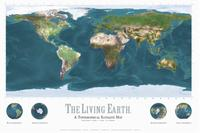 Living Earth satellite map