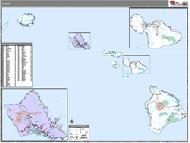 Hawaii Wall Map